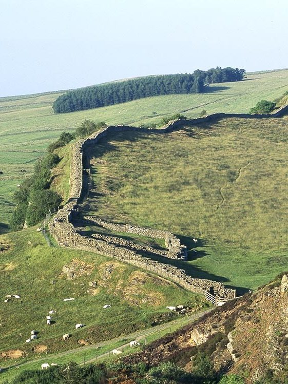 Cawfield Fort